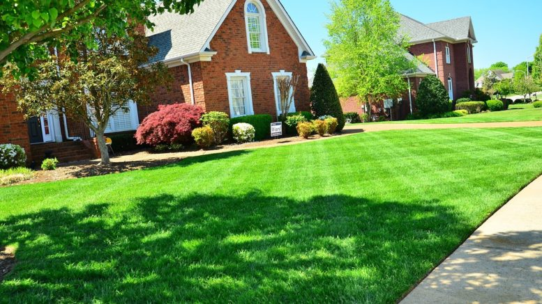 lawn-care-backyard-landscaping