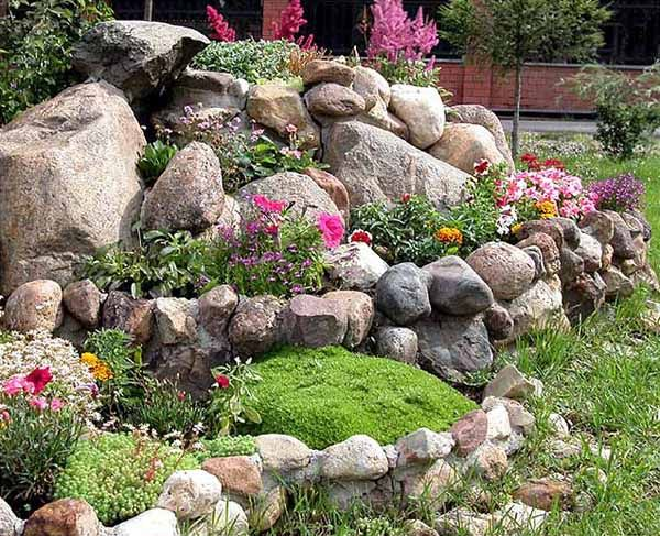 how to plant shrubs in rock bed