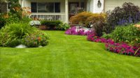 how to do landscaping on your own