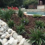how to replace mulch with stone